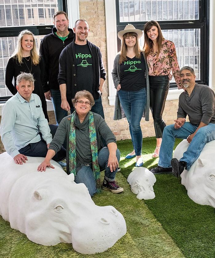 hippo-insurance-team
